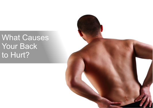 What Causes Your Back to Hurt?